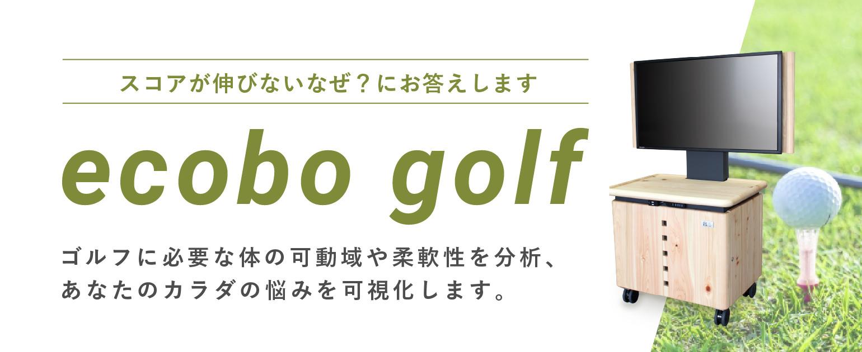 ecobo golf スコアが伸びないなぜ?にお答えします ゴルフに必要な体の可動域や柔軟性を分析、あなたのカラダの悩みを可視化します。